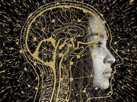 Frauenbild über das eine transparente Darstellung des Gehirns gelegt wurde