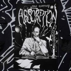 Titelbild zu Ian Cushings Absorption