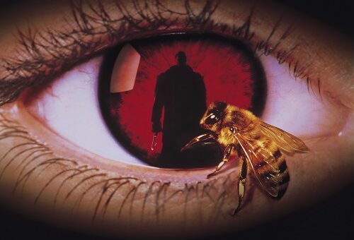 Candyman-Werbeplakat: Der Candybild als Pupille eines Auges, auf dem eine Biene krabbelt